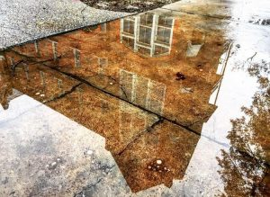 Photo of Manly Hall reflected in a rain puddle